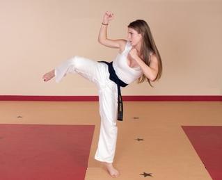 Karate Karate Do Kungfu Kung Fu Wushu Te Ashi Do